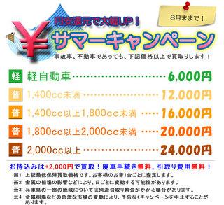 金田商店様サマーキャンペーン